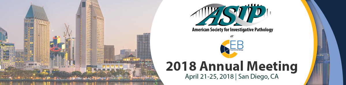 ASIP 2018 Annual Meeting